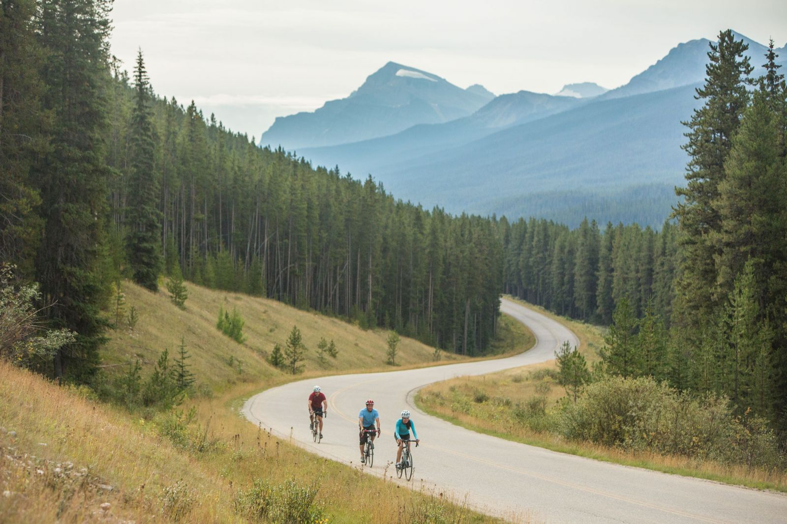 Cycle the Bow Valley Parkway in Banff National Park