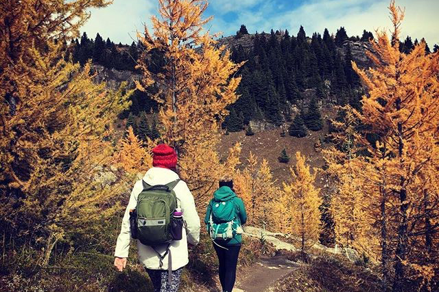 Larch Hikes